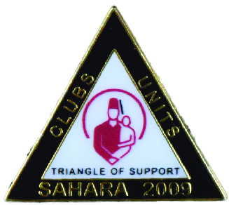 Triangle Shaped Pin